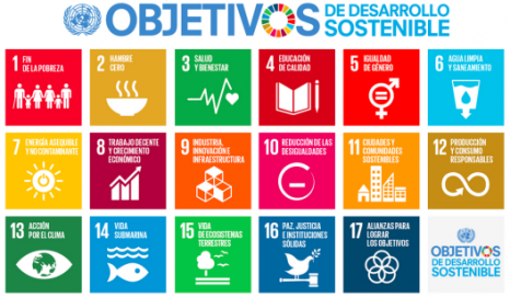 objetivos-desarrollo-sostenible-agenda-2030-onu-cumbre-1-528x307